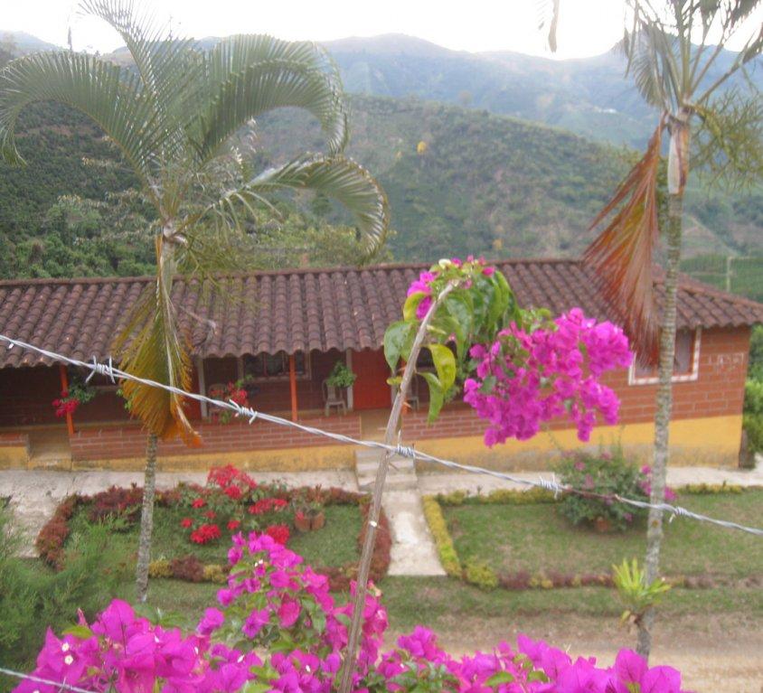 Finca Villa Luz 3